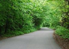 Path in spring park. Asphalt path in spring Kyiv park Royalty Free Stock Photo