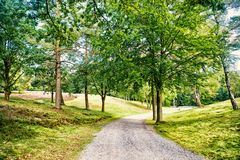 Path in spring or summer forest, nature. Road in wood landscape, environment. Footpath among green trees, ecology. Nature, environment and ecology concept stock photography