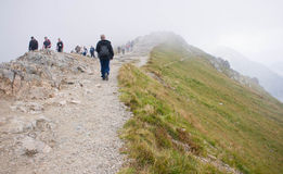 Path on the steep side of Kasprowy Wierch in Tatra mountains Royalty Free Stock Photo