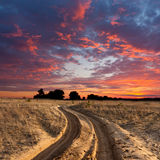 Path in steppe on sunset Royalty Free Stock Images