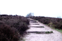 Path with steps  at the Posbank in Rheden, National park Veluwe, Stock Photography