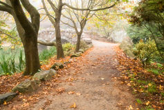 Path and Stone Bridge, Autumn Royalty Free Stock Images