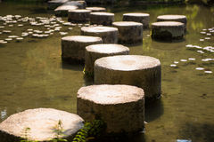 Path. Stone path in the garden Stock Photography