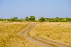 Path on the summer field with a forest on the background. And clear blue sky Stock Image