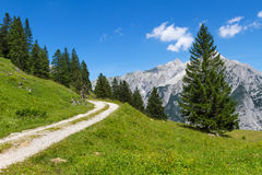 Path through summer mountain landscape. Austria. Tirol, near Walderalm Stock Images