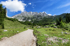 Path through summer mountain landscape. View of Wilder Kaiser, Austria, Tyrol Royalty Free Stock Photo