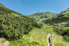 Path through summer mountain valley Royalty Free Stock Image