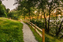 Path at Sunset Stock Images