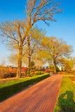 The path sunset Stock Image