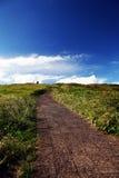 The Path. Taken at Muttonbird Island near Coffs Harbour on Australia's East Coast Royalty Free Stock Photos