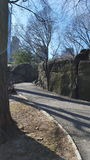 The path less taken. View of stone path in Central Park, Manhattan Stock Photo