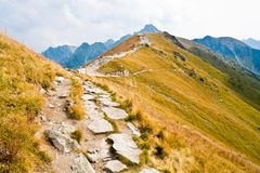 Path in Tatra mountains Royalty Free Stock Photography