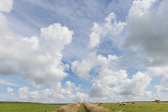 Path Texel Clouds Royalty Free Stock Photography