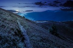 Path though mountain hills and ridge at night. In full moon light. beautiful scenery with spruce tree on a slope in fine weather on late summer Royalty Free Stock Photos