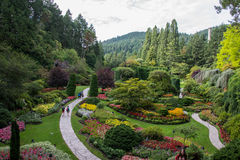 Path through sunken gardens, Butchart Gardens, Victoria, Canada Stock Image
