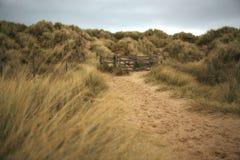 Path throught the sand dunes Royalty Free Stock Photos