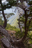 Path thru Samaria gorge Royalty Free Stock Photo