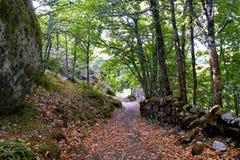Path to Aguiar castle in Vila Pouca de Aguiar. Portugal Stock Image