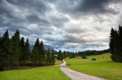 Path to alpine meadows Royalty Free Stock Image