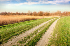 Path to the area for bird watching Stock Photography