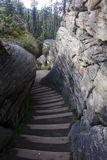 Path to Athabasca Falls near Jasper in Canada Royalty Free Stock Photo