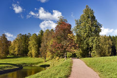 Path to the autumn park Royalty Free Stock Photos