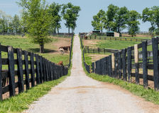 The Path to the Back of the Farm Royalty Free Stock Photo