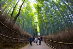 Path to bamboo forest Arashiyama Royalty Free Stock Image