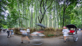 Path to bamboo forest with blurred tourists in Arashiyama, Kyoto. Wide angle long exposure in Arashiyama bamboo forest with blurred tourists, Kyoto, Japan Royalty Free Stock Photography