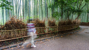 Path to bamboo forest with blurred tourists in Arashiyama, Kyoto. Wide angle long exposure in Arashiyama bamboo forest with blurred tourists, Kyoto, Japan Stock Photo
