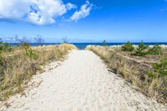 Path to the beach at the Baltic Sea Royalty Free Stock Image