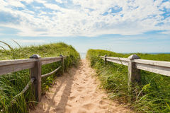 Path to the beach at Basin Head Royalty Free Stock Photo