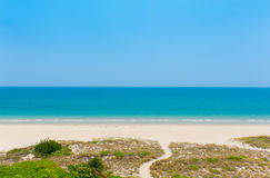 Path to the beach in Florida Stock Image