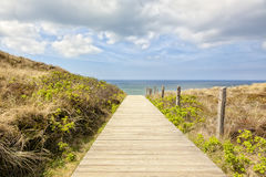 Path to the beach of Kampen, Sylt. Wooden path to the beach of Kampen, Sylt, Germany Stock Photo