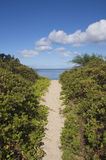 Path to the beach Maui Royalty Free Stock Photos