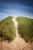 Path to beach over grassy sand dunes Royalty Free Stock Images