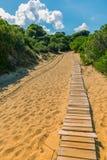 Path to the beach. Path to the sandy beach in Skiathos island, Greece. Boardwalk to beach. Aegean Sea royalty free stock image