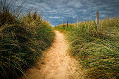 Path to the beach, Quiberon's landscape, Bretagne (Brittany), Fr. Ance royalty free stock images