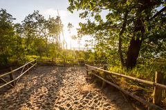 Path to the beach. Sand path to the beach Royalty Free Stock Photography