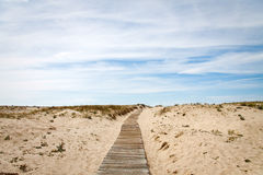 Path to the beach Royalty Free Stock Image