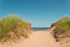 Path to the beach at St. Peters Bay on the northern shore Royalty Free Stock Photography