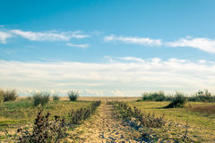 Path to the beach. In a sunny day Royalty Free Stock Image