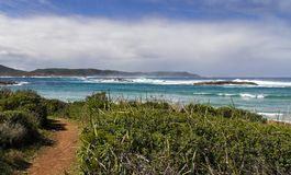 Path to the beach - Western Australia. Path to the beach with wild plants in the foreground and brilliant blue water and surf in the background.  Blue sky and Stock Photo