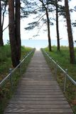 Path to the beach. A wooden path to the beach in Ruegen, Northern Germany Stock Photos