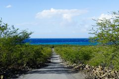 Path to a black sand beach royalty free stock photos
