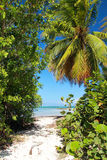 Path to caribbean sea Stock Photography