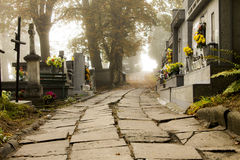 The path to the cemetery Stock Images