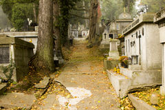 The path to the cemetery Stock Photography