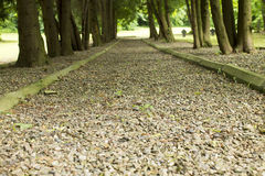 The path to the cemetery Royalty Free Stock Photography