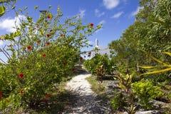 Free Path To Chapel-2 Stock Image - 42731001